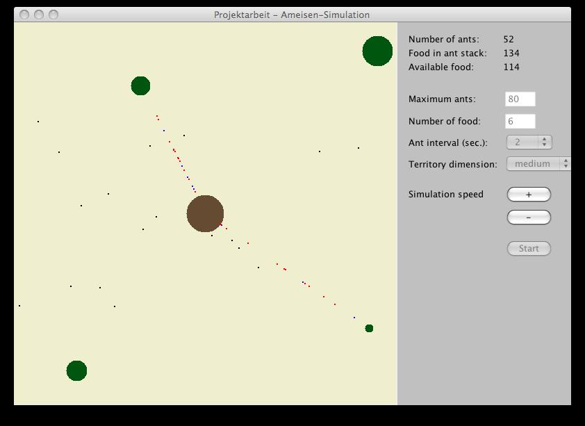 Ant simulation